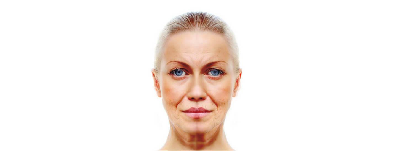 Six-Week Natural Postmenopause Solution 13 1